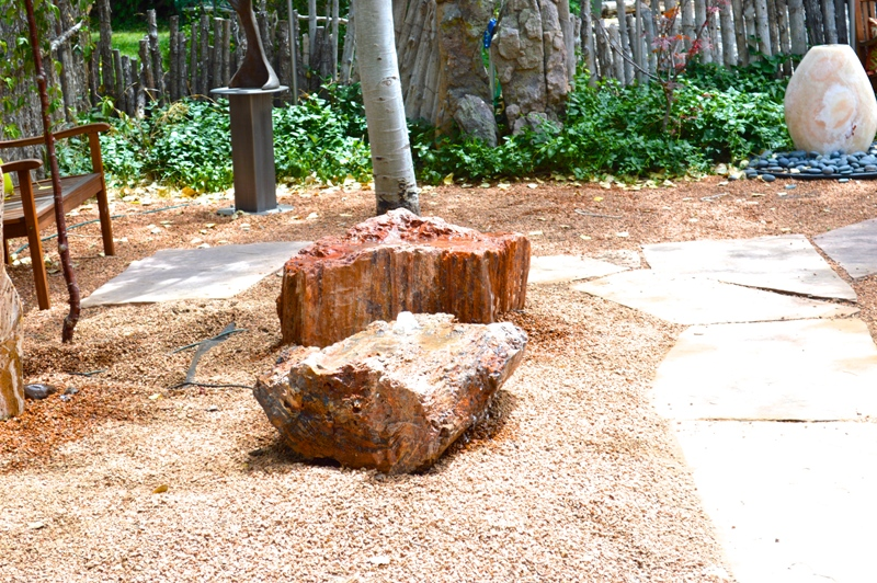 Petrified Wood Fountain Installed in the back garden